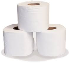 Two ply Toilet Tissue 96 rolls